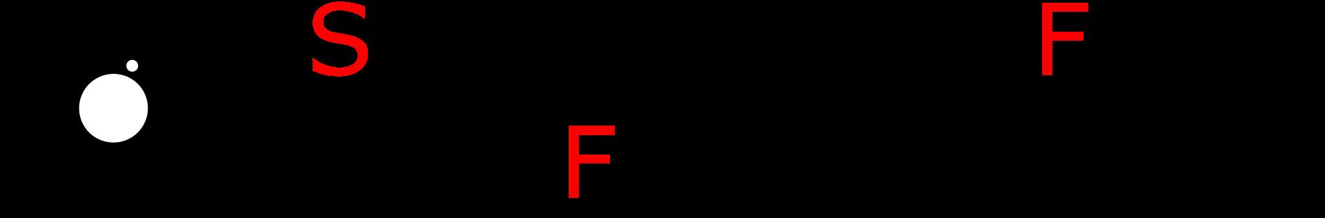 Logo Starnberger Film- und Fotogilde e.V. responsive